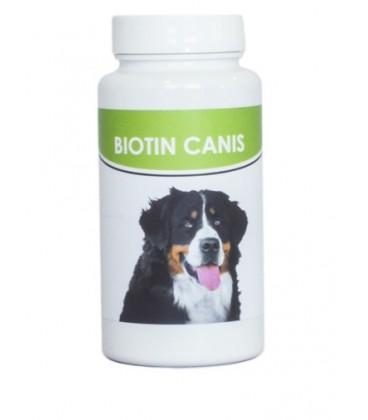 Biotin Canis